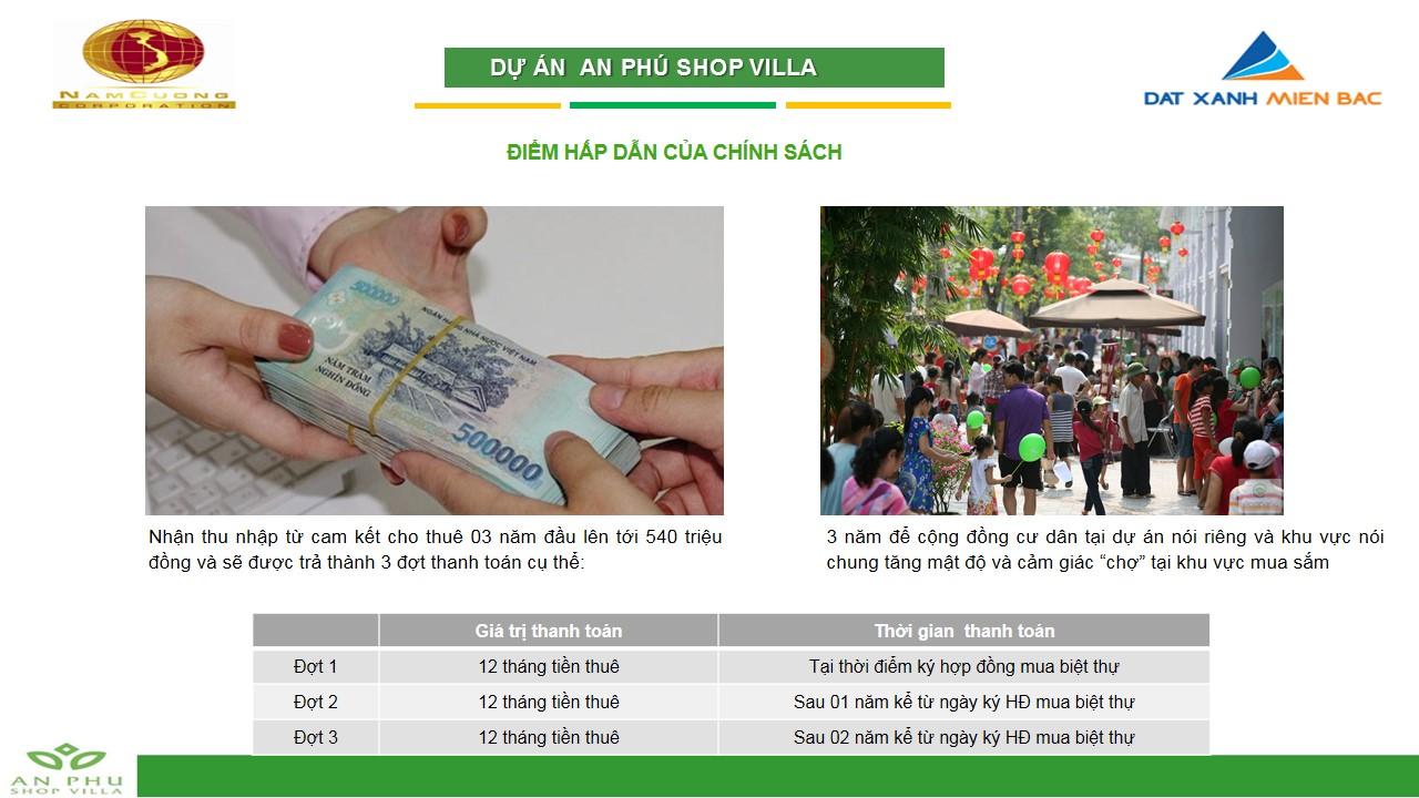 an-phu-shop-villa20