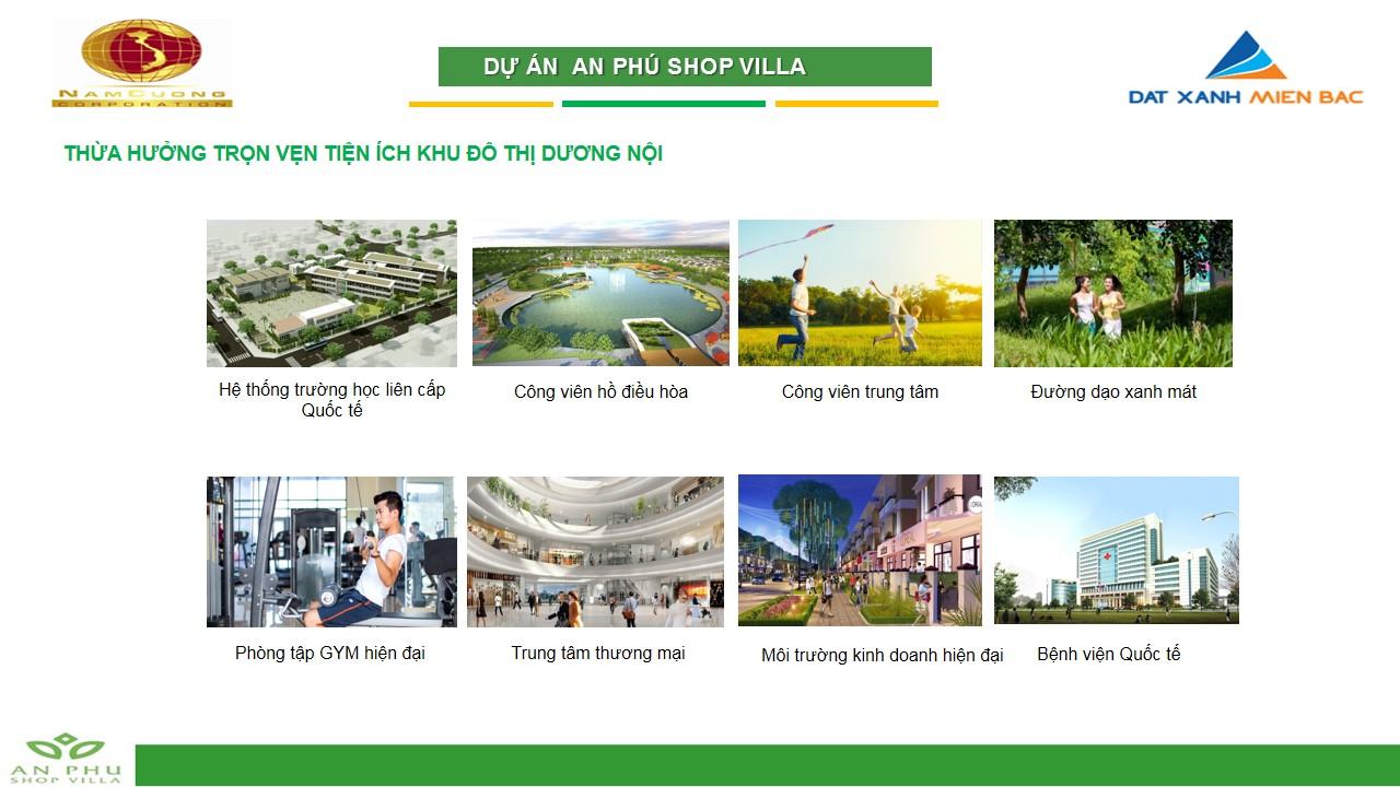 an-phu-shop-villa7